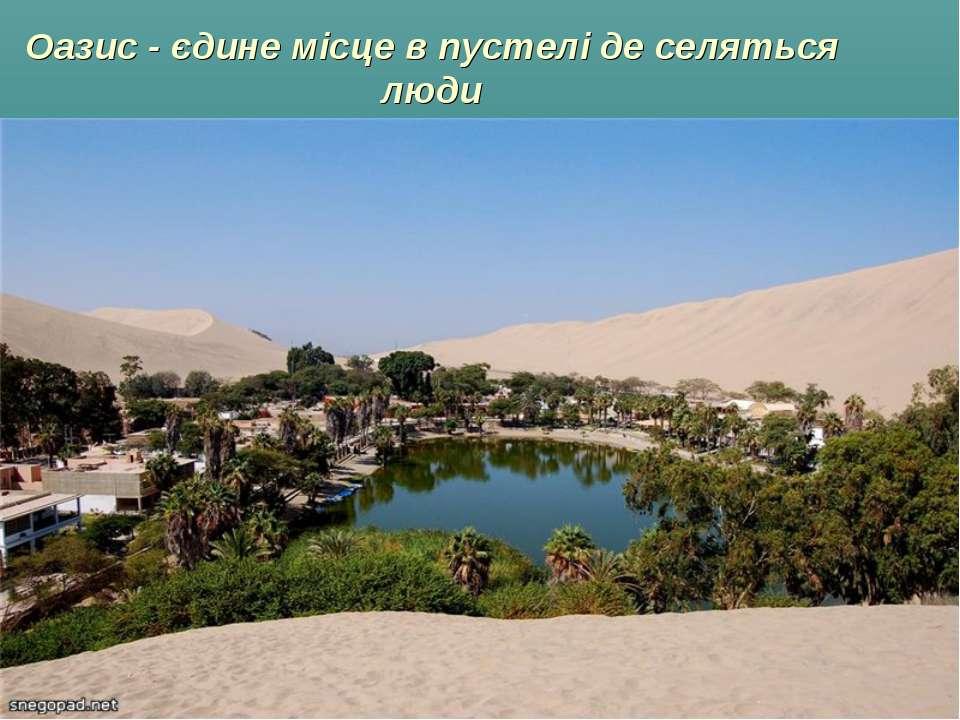 Оазис - єдине місце в пустелі де селяться люди