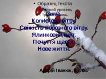 Зима. Колискова вітру. Свіжість морозного вітру. Ялинковий цвіт. Почуття щаст...