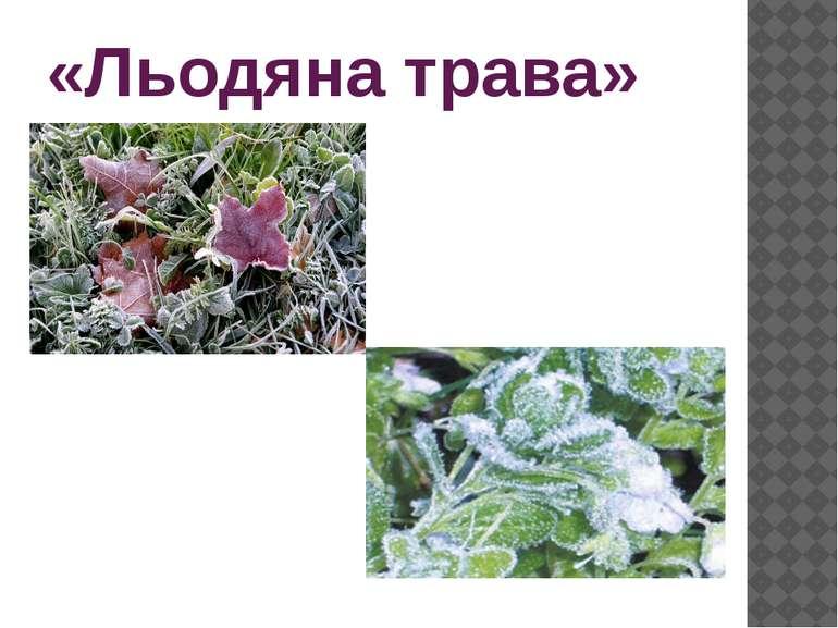 «Льодяна трава»