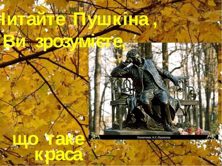 що таке краса Читайте Пушкіна , і Ви зрозумієте,