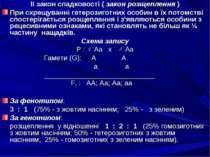 ІІ закон спадковості ( закон розщеплення ) При схрещуванні гетерозиготних осо...