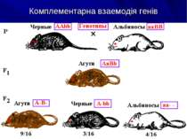 Комплементарна взаемодія генів