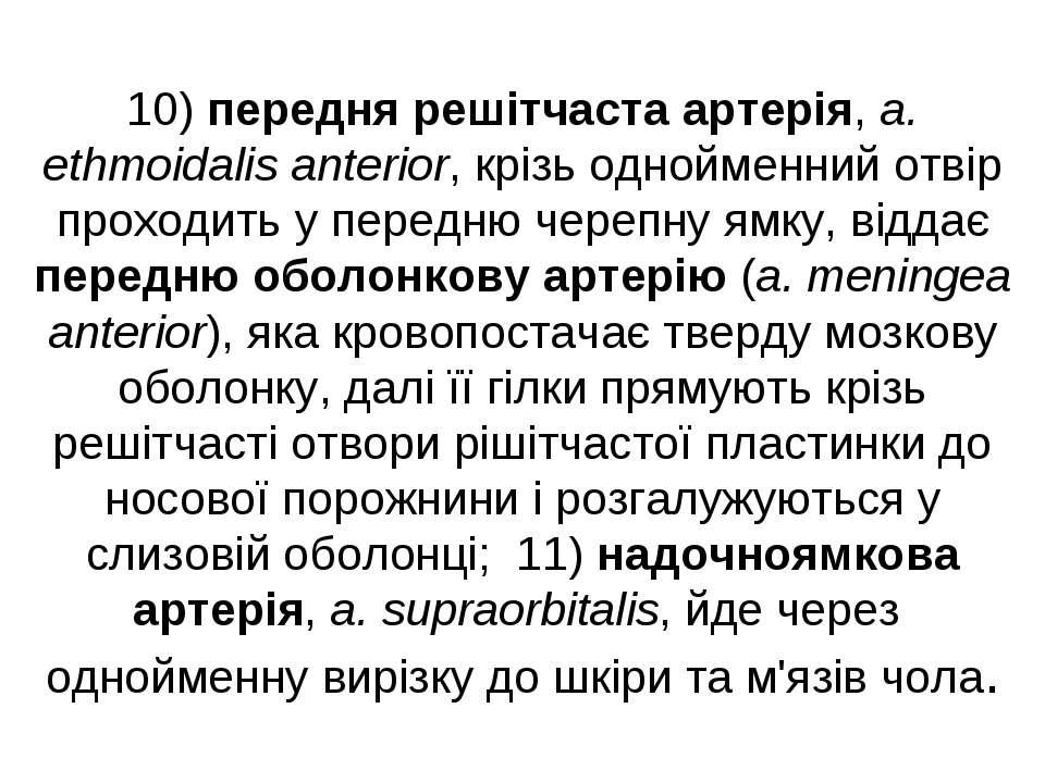 10) передня решітчаста артерія, a. ethmoidalis anterior, крізь однойменний от...