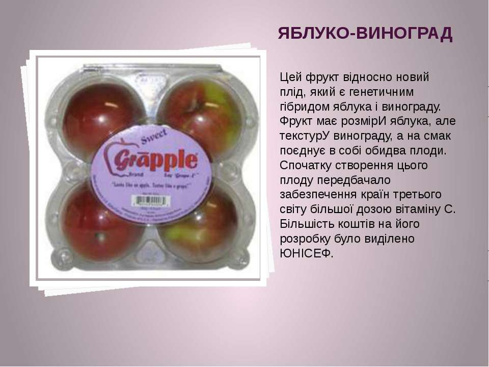 ЯБЛУКО-ВИНОГРАД Цей фрукт відносно новий плід, який є генетичним гібридом ябл...