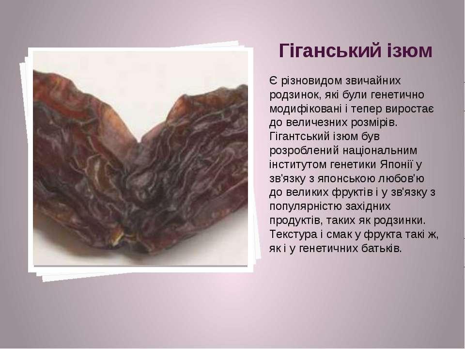 Гіганський ізюм Є різновидом звичайних родзинок, які були генетично модифіков...