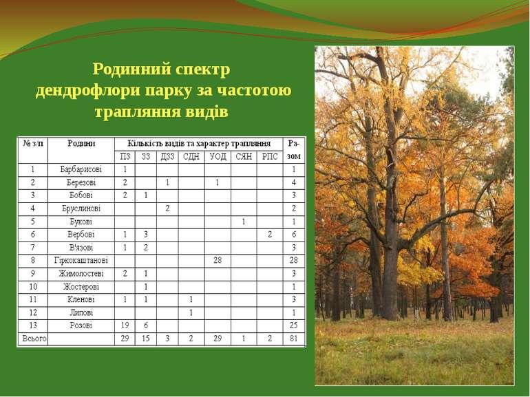Родинний спектр дендрофлори парку за частотою трапляння видів