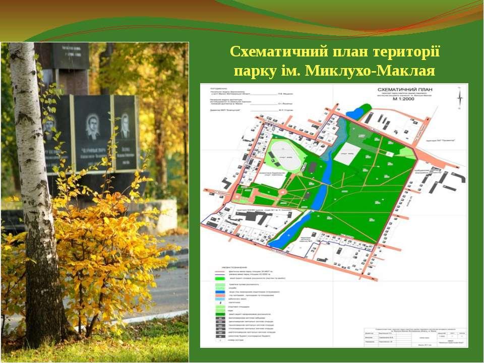 Схематичний план території парку ім. Миклухо-Маклая