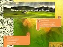 Підготували: Учениця 10-А класу Сквирського ліцею Гальчинська Наталія, Вчител...