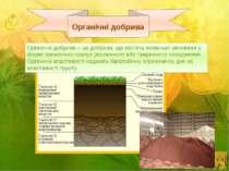 Органічні добрива Органічні добрива – це добрива, що містять живильні речовин...