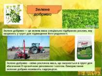 Зелене добриво - свіжа рослинна маса, що заорюється в грунт для збагачення її...