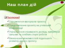 Наш план дій Листопад Оформлення матеріалів проекту Представлення проекту на ...