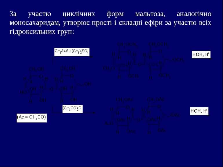 За участю циклічних форм мальтоза, аналогічно моносахаридам, утворює прості і...