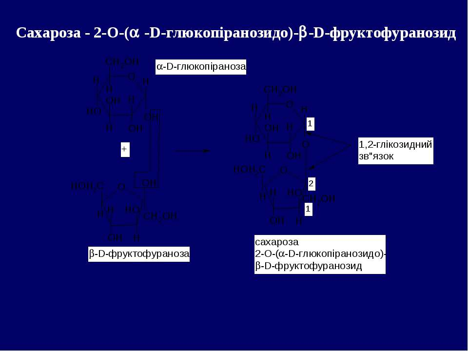 Сахароза - 2-О-( -D-глюкопіранозидо)- -D-фруктофуранозид