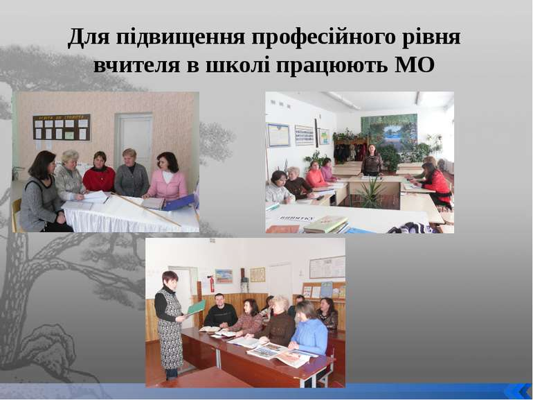 Для підвищення професійного рівня вчителя в школі працюють МО
