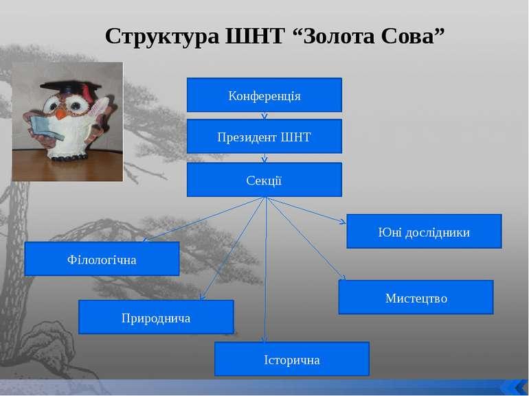 """Структура ШНТ """"Золота Сова"""" Конференція Президент ШНТ Секції Філологічна Мист..."""