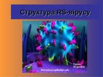 Структура RS-вірусу