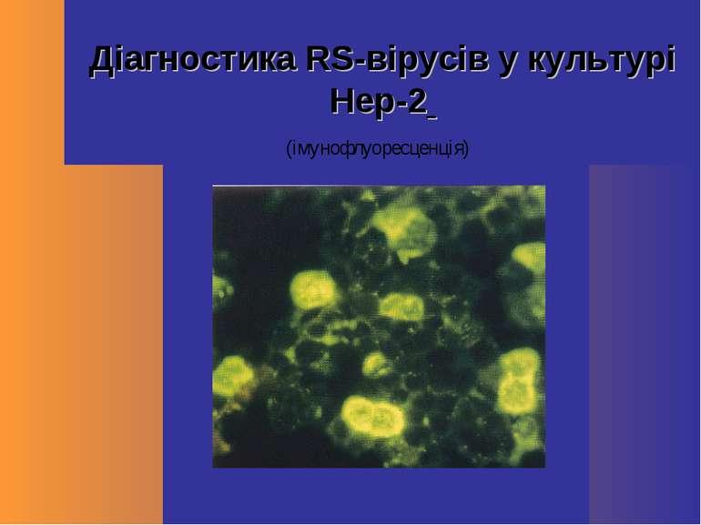 Діагностика RS-вірусів у культурі Hep-2 (імунофлуоресценція)