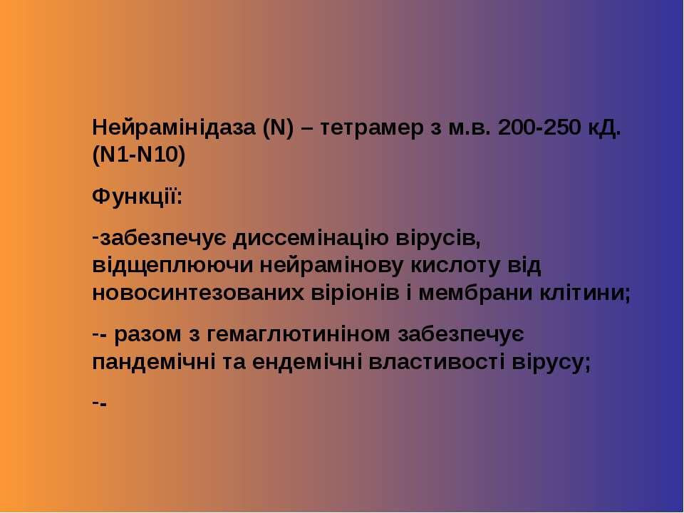Нейрамінідаза (N) – тетрамер з м.в. 200-250 кД. (N1-N10) Функції: забезпечує ...