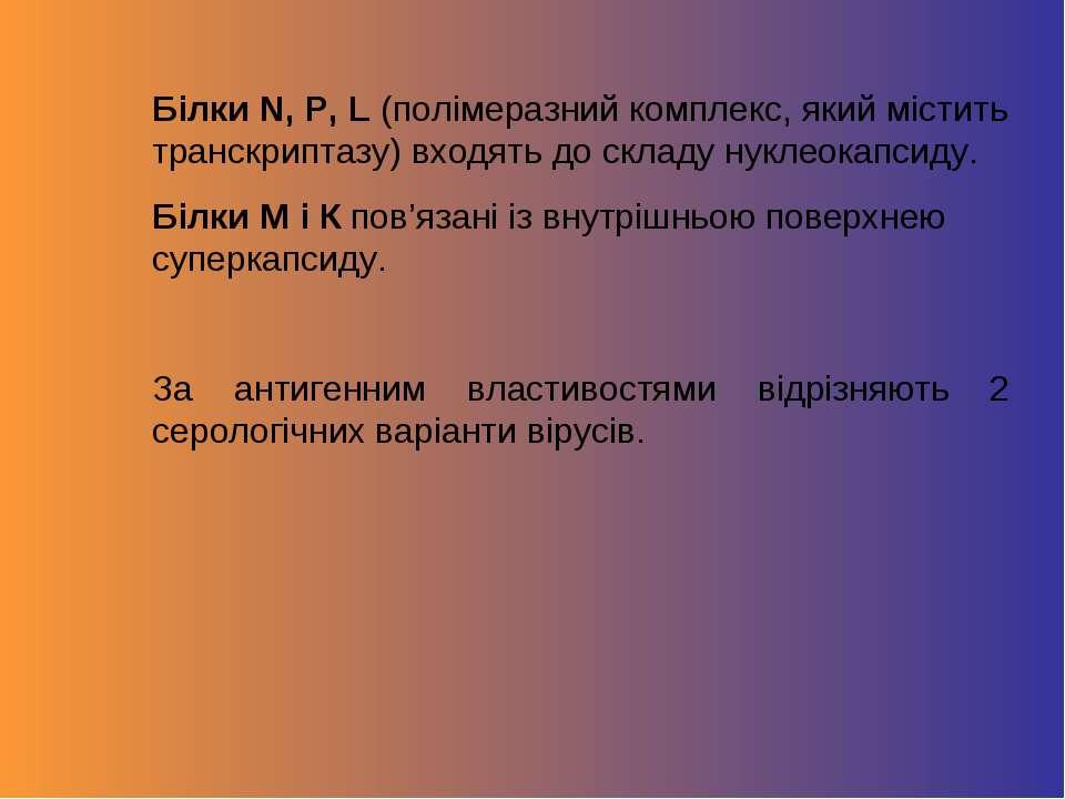 Білки N, P, L (полімеразний комплекс, який містить транскриптазу) входять до ...