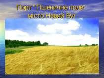 """Порт """"Пшеничне поле"""" місто Новий Буг"""