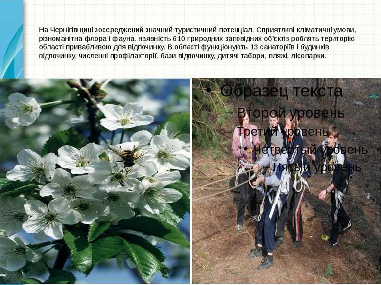 На Чернігівщині зосереджений значний туристичний потенціал. Сприятливі клімат...