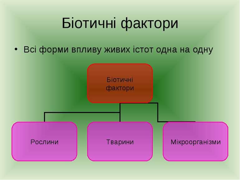 Біотичні фактори Всі форми впливу живих істот одна на одну