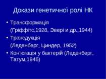 Докази генетичної ролі НК Трансформація (Гріффітс,1928, Эвері и др.,1944) Тра...