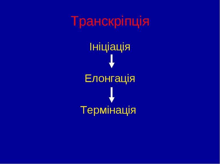 Транскріпція Ініціація Елонгація Термінація