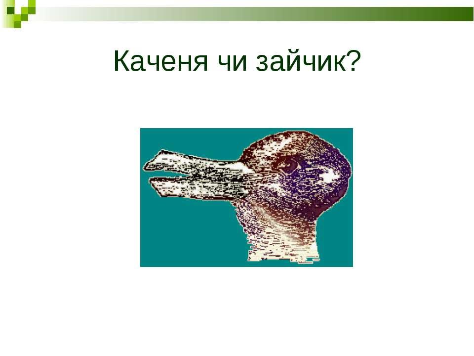 Каченя чи зайчик?