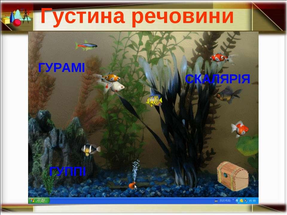 ГУРАМІ СКАЛЯРІЯ ГУППІ Густина речовини http://aida.ucoz.ru