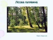 Лісова галявина Павло Жиронков