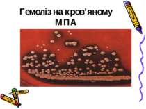 Гемоліз на кров'яному МПА