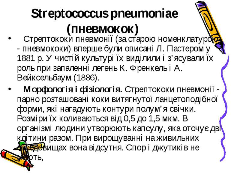 Streptococcus pneumoniae (пневмокок) Стрептококи пневмонії (за старою номе...