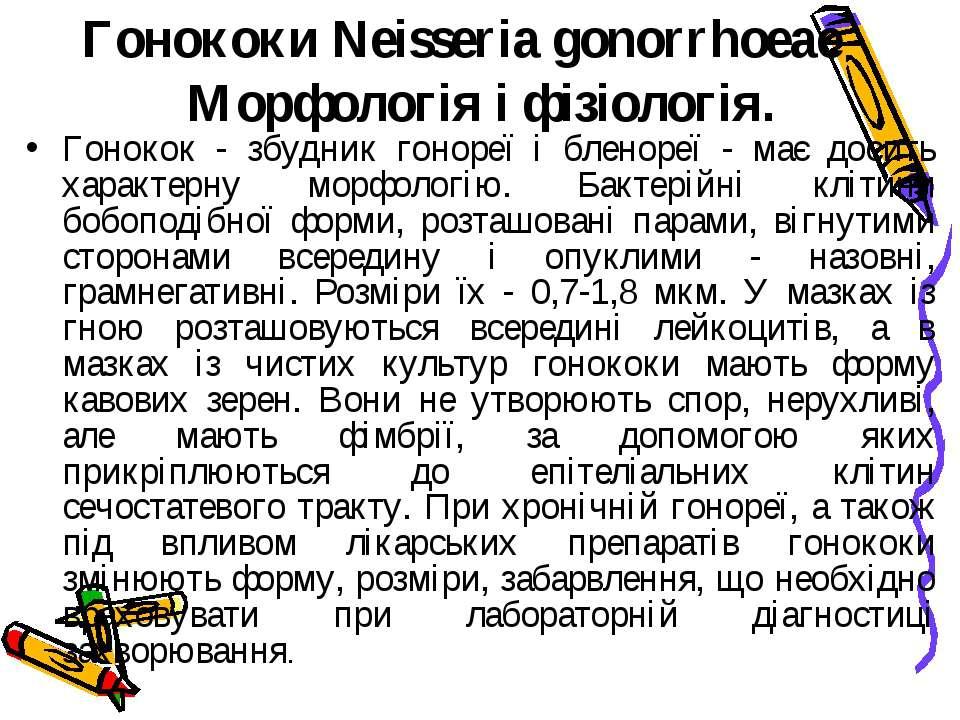 Гонококи Neisseria gonorrhoeae Морфологія і фізіологія. Гонокок - збудник ...