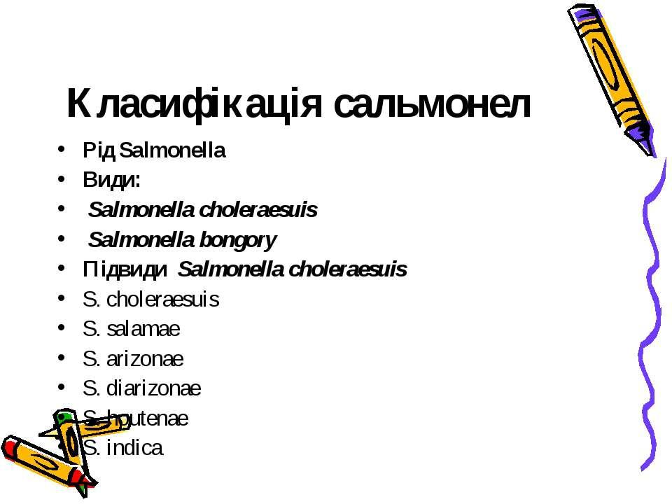 Класифікація сальмонел Рід Salmonella Види: Salmonella choleraesuis Salmonell...