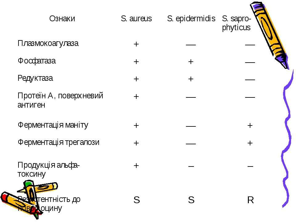 Ознаки S. aureus S. epidermidis S. sapro-phyticus Плазмокоагулаза + — — Фосфа...
