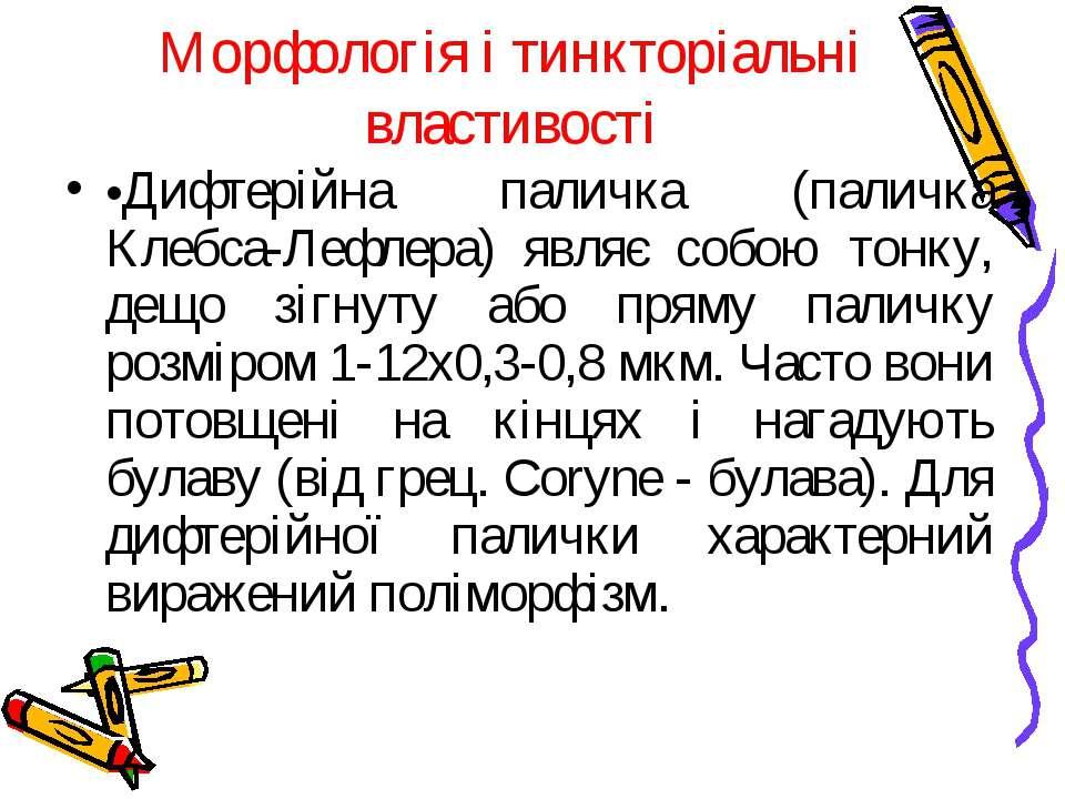 Морфологія і тинкторіальні властивості •Дифтерійна паличка (паличка Клебса-Ле...