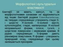 Морфологічні і культуральні властивості Бактерії не мають капсул, та за морфо...