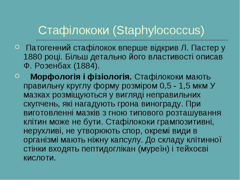 Стафілококи (Staphylococcus) Патогенний стафілокок вперше відкрив Л. Пастер ...