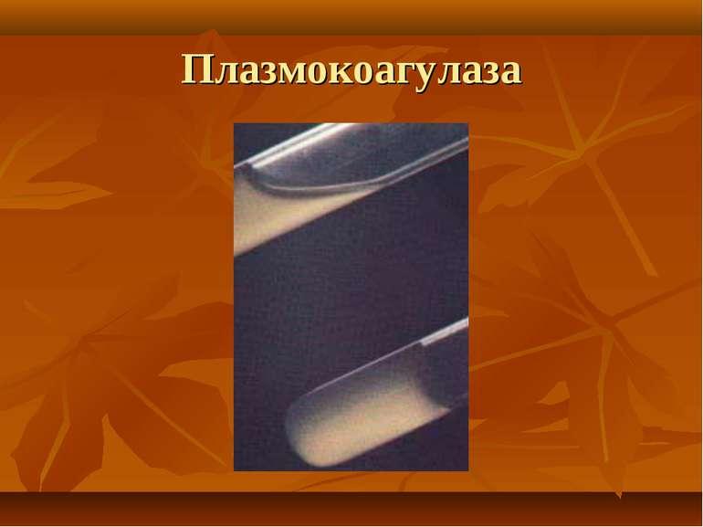 Плазмокоагулаза