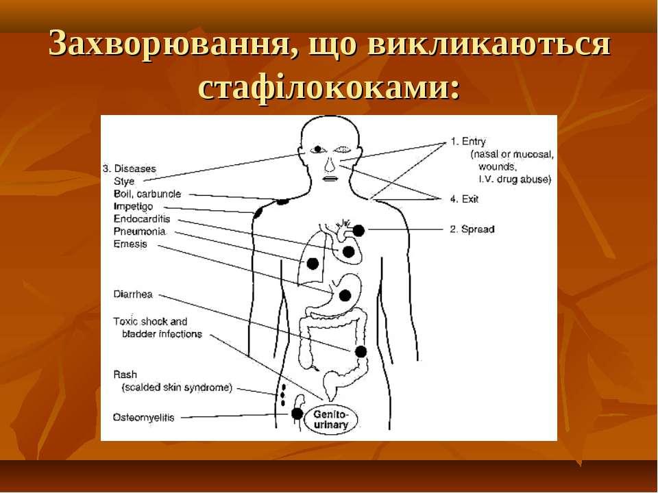Захворювання, що викликаються стафілококами: