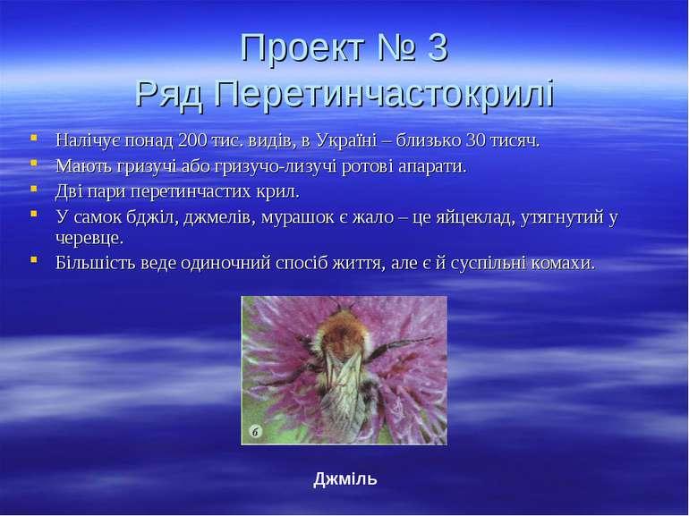 Проект № 3 Ряд Перетинчастокрилі Налічує понад 200 тис. видів, в Україні – бл...