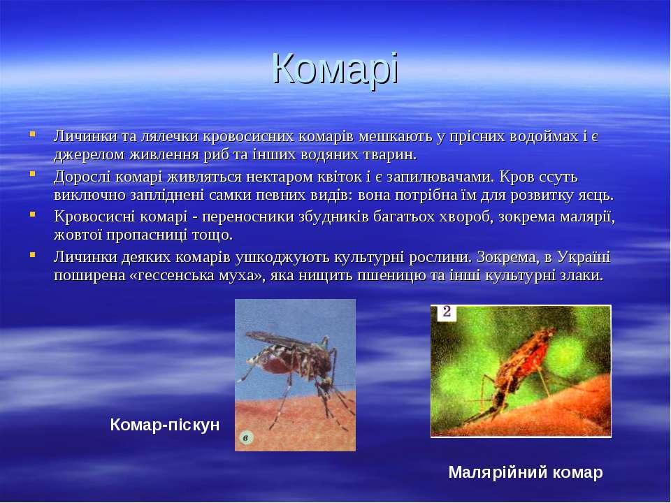 Комарі Личинки та лялечки кровосисних комарів мешкають у прісних водоймах і є...