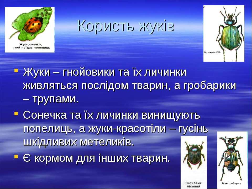Користь жуків Жуки – гнойовики та їх личинки живляться послідом тварин, а гро...