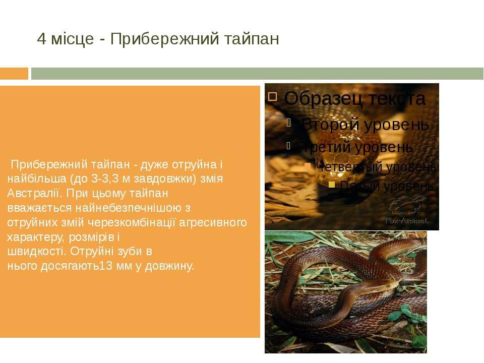 4 місце - Прибережнийтайпан Прибережнийтайпан- дужеотруйнаі найбільша(...