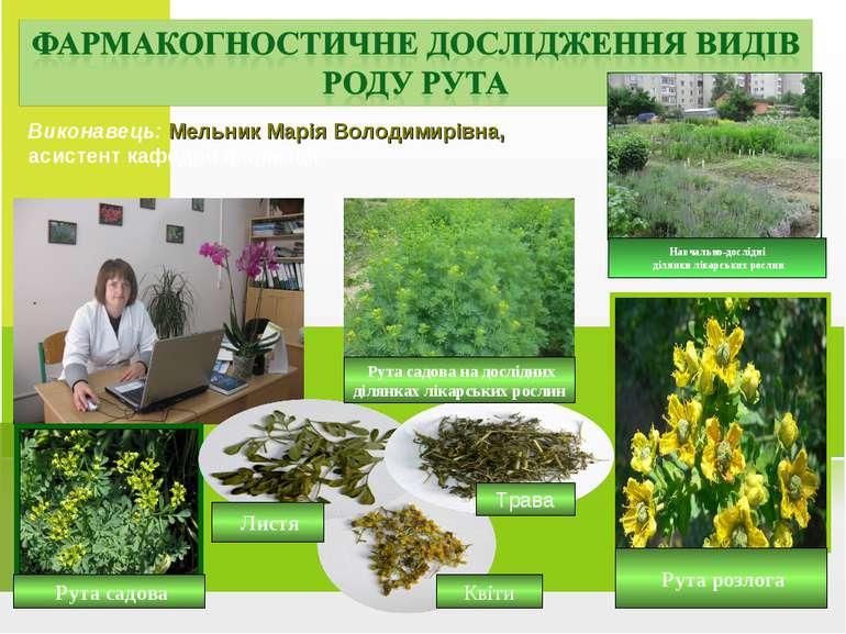 Виконавець: Мельник Марія Володимирівна, асистент кафедри фармації Навчально-...