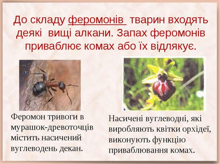 До складу феромонів тварин входять деякі вищі алкани. Запах феромонів привабл...
