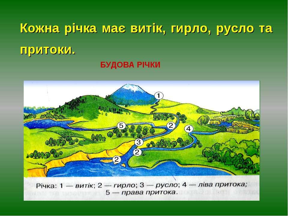 БУДОВА РІЧКИ Кожна річка має витік, гирло, русло та притоки.