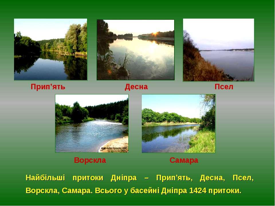 Найбільші притоки Дніпра – Прип'ять, Десна, Псел, Ворскла, Самара. Всього у б...