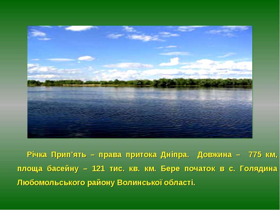 Річка Прип'ять – права притока Дніпра. Довжина – 775 км, площа басейну – 121 ...